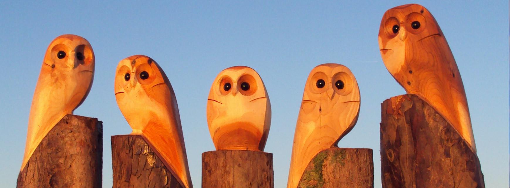 Duncan Kitson Owl Wooden Sculptures